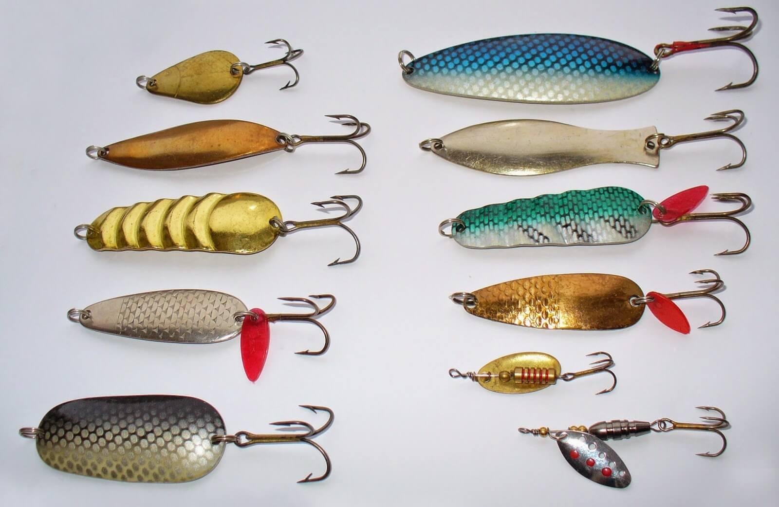 Наживки для удачной рыбалки