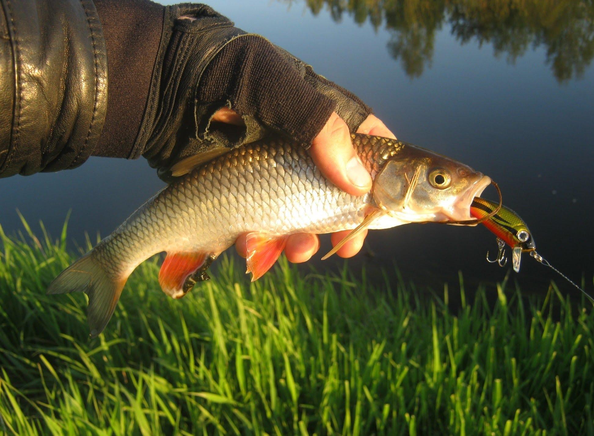Рыбалка на реке пуре