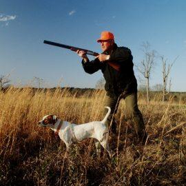 Как подготовиться к охоте новичку?