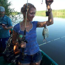 Как ловить плотву с помощью фидера