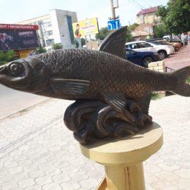 Особенности ловли воблы в Астрахани 2019